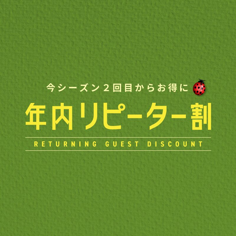 RETURNING GUEST DISCOUNT 30% Off