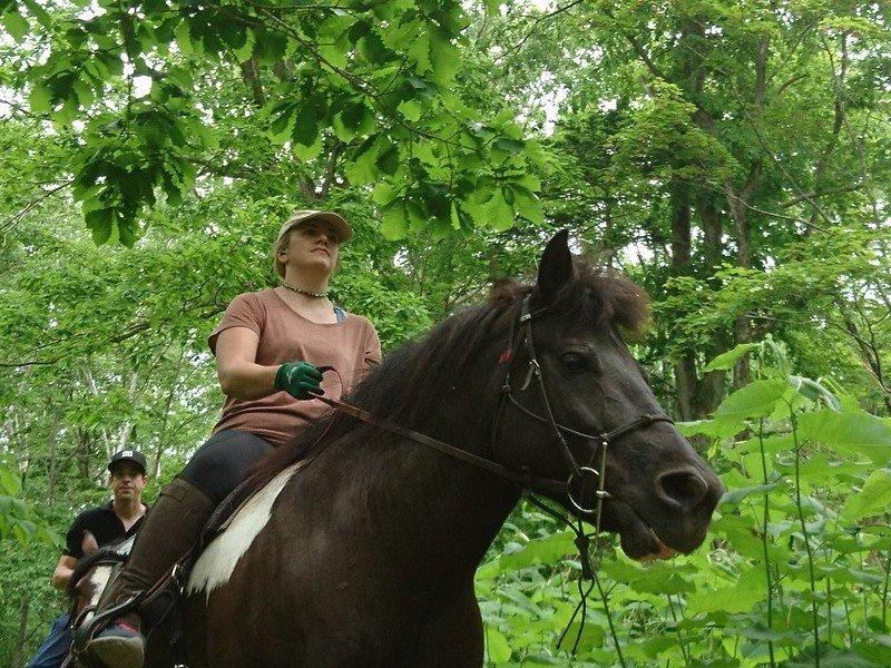 騎馬體驗觀光