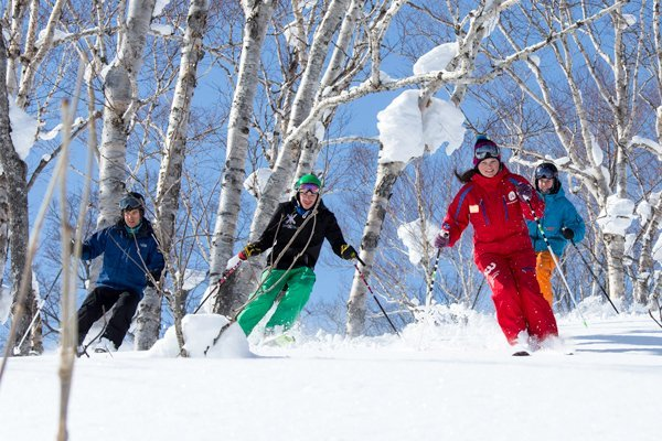 Niseko International Snowsports School - Adult Programs