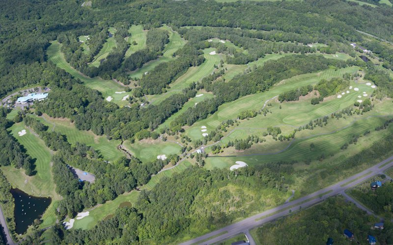 hanazono golf course from above