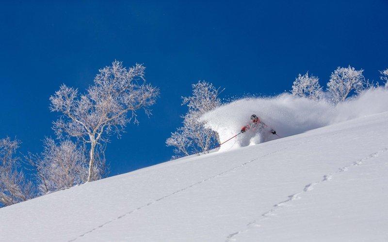 julian carr 在雪地上馳騁
