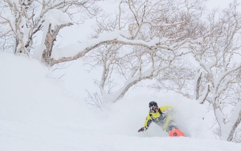 花園度假村粉雪導賞