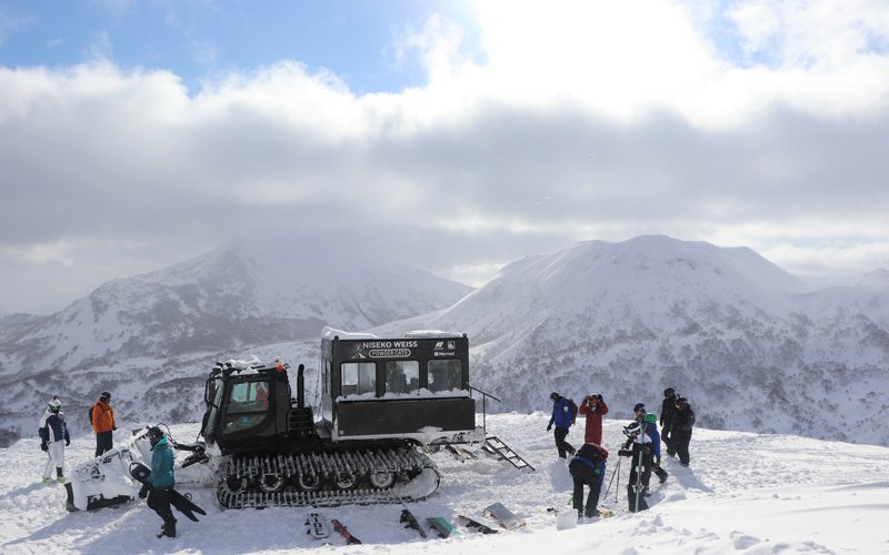 weiss powder cats looking back at niseko united resorts
