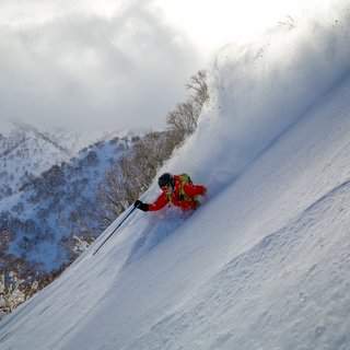Niseko's Best Start in 20 Years