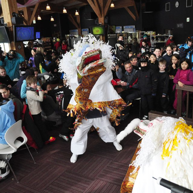 Lion dance square medium