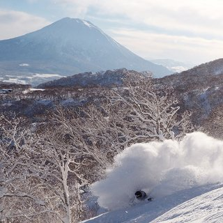 Heads of Hanazono: Koji Furuta - Niseko Sports Manager