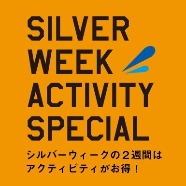 Silver week sale 2017