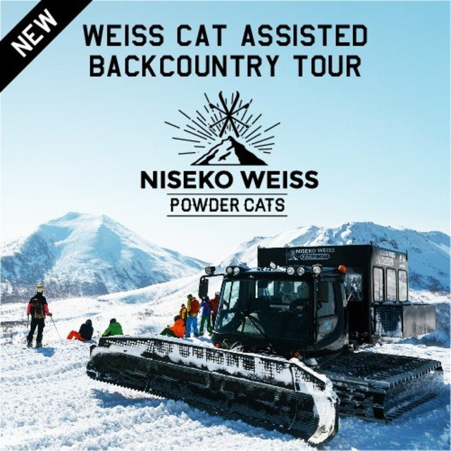 Weiss cat assisted backcountry tour medium