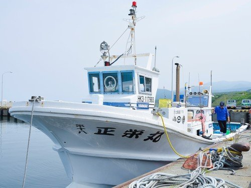 Ocean Fishing Tour|Hanazono Summer New Activity 2020